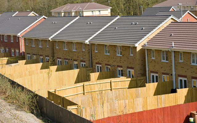 Roof, Wood, Plywood